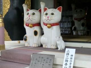 今戸神社 御朱印 / 東京都台東区