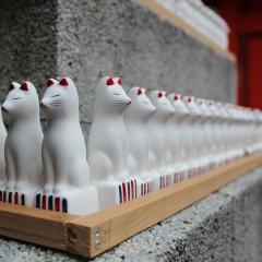 馬橋稲荷神社 初午御朱印 / 東京都杉並区
